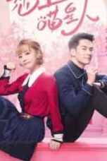 Nonton Drama China Falling In Love With Cats (2020)Sub Indo